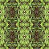 Folkloric Ferns (Original)