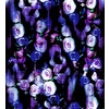 Thrilling Florals No2 NON Repeat Pattern (Original)
