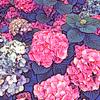 Full Bloom (Original)