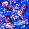 Roses Paradise (Original)