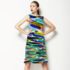 Colorful Brush Strokes (Dress)