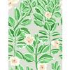 536 Ficus Print (Original)