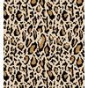 Leopard003 (Original)