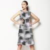 Fashion Brush/2080_v2 (Dress)