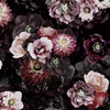 Dark Photographic Floral (Original)
