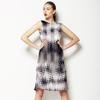 Hard Net (Dress)