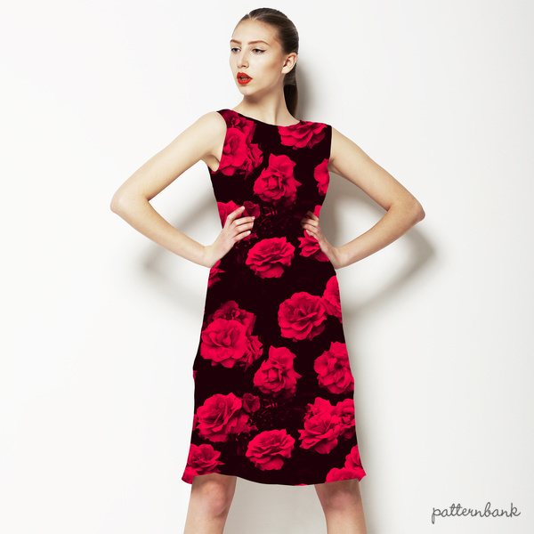 Red Roses 250316 1