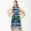 Colorful Stripes (Dress)