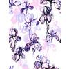 Inky Irises (Original)