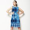 Distressed Ikat Border Print (Dress)