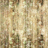 Wood Texture Nature (Original)