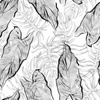 Sketched Palm Lives Exotic Foliage and Tropical Vegetation Monochrome (Original)