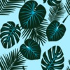 Exotic Flora (Original)